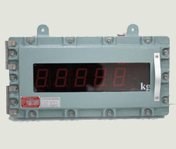 Explosion proof indicator_EXP900